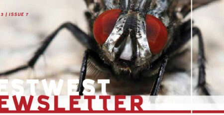 PestWest 7 Newsletter
