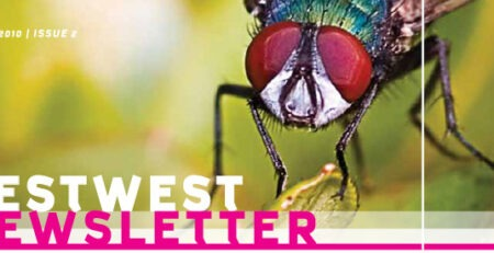 PestWest Newsletter - 2