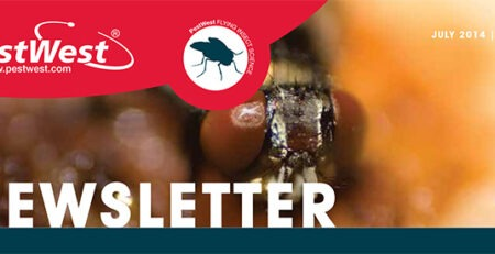 Newsletter PestWest Nr 8