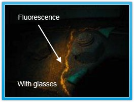 Fluorescence with glasses