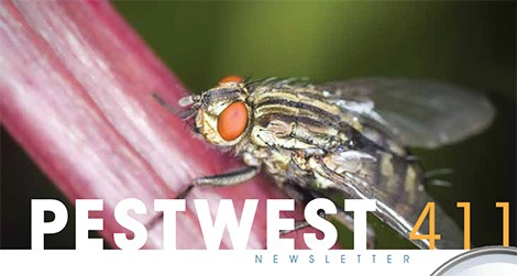 PestWest USA Newsletter Issue 13