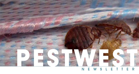 PestWest USA Newsletter Issue 14