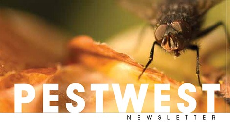PestWest USA Newsletter Issue 3