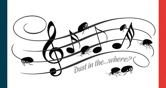 Dust in the…where?