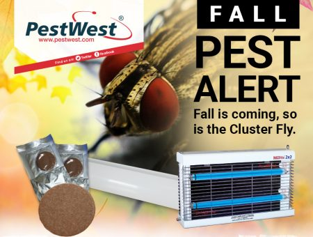 Tired of Cluster flies being lured into your customers' homes?