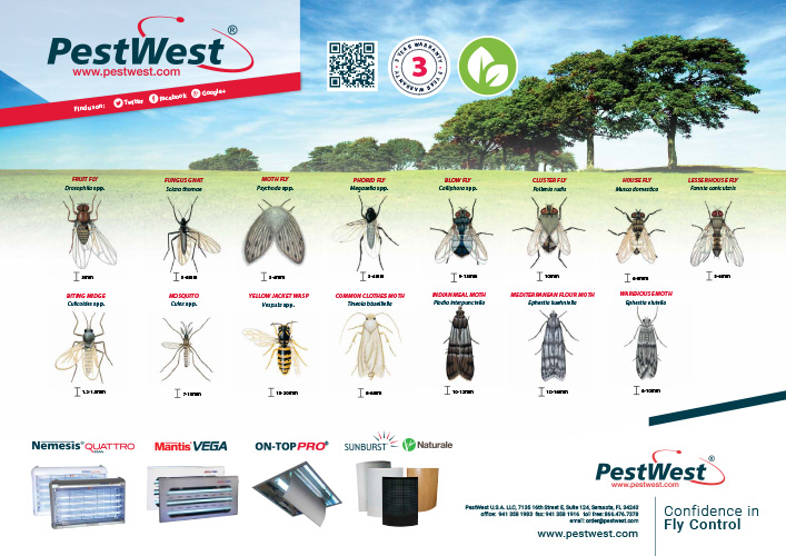 PestWest Insect ID Poster