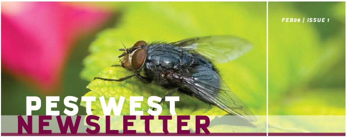 PestWest UK Newsletter Issue 1 top