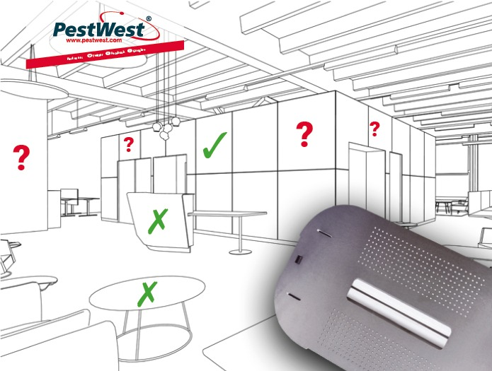 PestWest The 6-easy dos and don'ts of siting a fly trap
